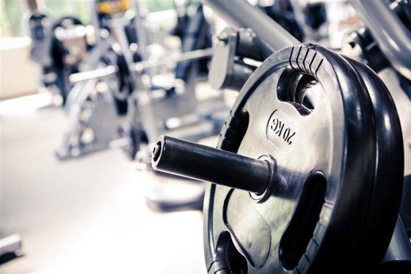Die richtige Unterstützung für den Muskelaufbau...