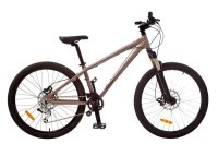 Damen-Mountainbike